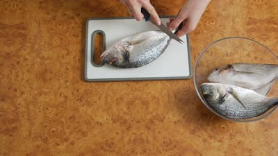 The Fish Cleaning