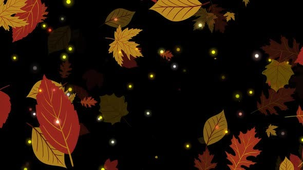 Cover Image for Leaf Falling
