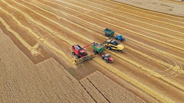 Thumbnail for Agricultural machinery harvesting wheat