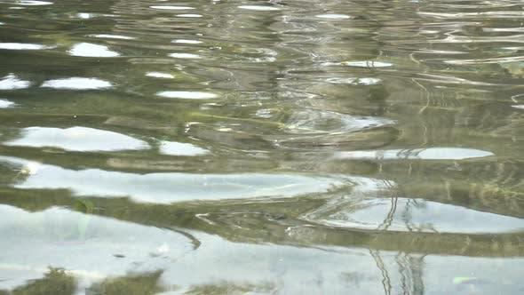 Thumbnail for Water 4K