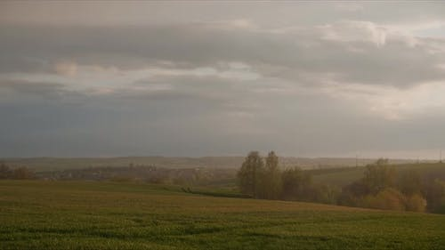 Timelapse Of A Wheat Field At Sunset. Countryside