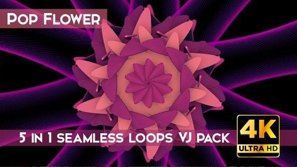 Pop Flower VJ Loops