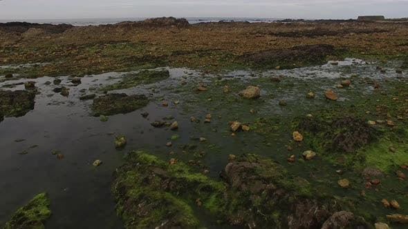 Thumbnail for Top View of Rocks in Water