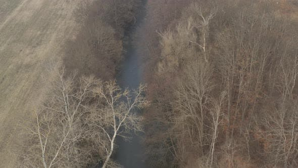 Thumbnail for Rural scenery of river Timok in Eastern Serbia 4K aerial video