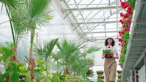 Young Woman in Uniform Taking Care of Flowers at Orangery