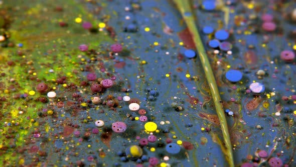 Thumbnail for Abstract Colorful Acrylic And Food Paint Bubbles On Water  34