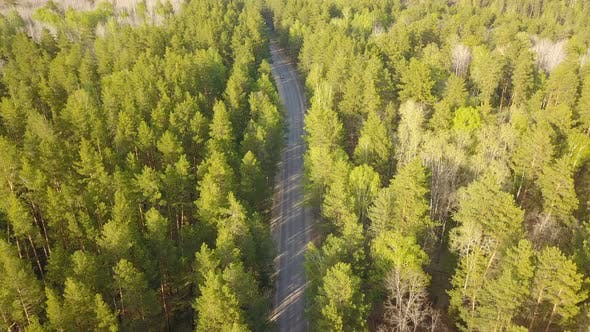 Thumbnail for Car On Forest Road