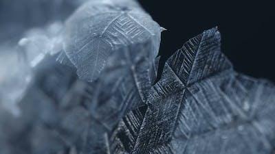 Snowflakes Melting