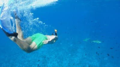 Underwater diving snorkeling with sharks in Bora Bora tropical island.