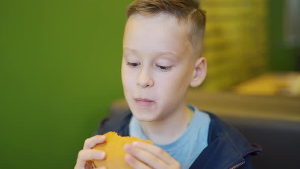 Thumbnail for Young Boy Eating Fries and Burger