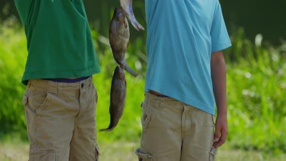 Boys holding up fish