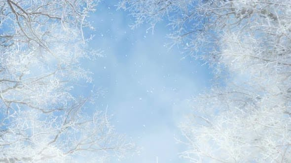 Thumbnail for Blue And White Winter Background Loops
