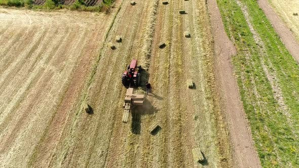 Cover Image for Farmer With Tractor Working on the Meadow
