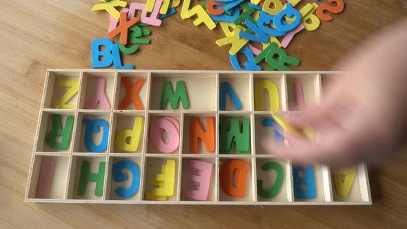 Thumbnail for Child Organizes Letters of the Alphabet in a Box