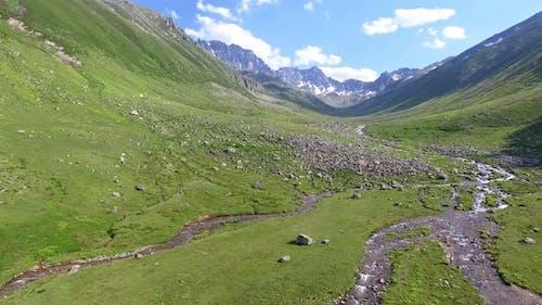 Alpine Tundra Stream