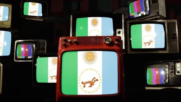 Thumbnail for Flag of Chaco Province, Argentina, on Retro TVs.