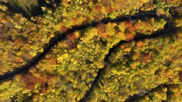 Thumbnail for Aerial Above View of Epic Colorful Autumn Forest Winding Road
