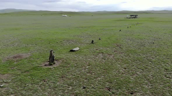 Thumbnail for Statue Menhirs and Memorial Area in the Central Asian Steppes