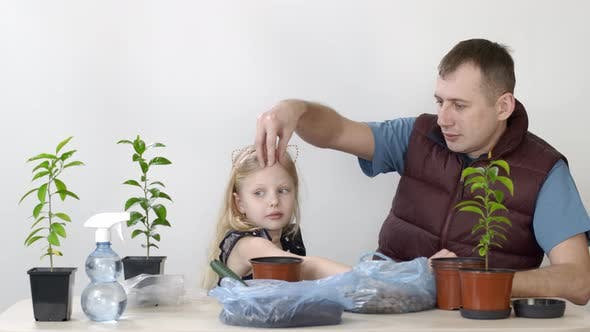 Thumbnail for Happy Emotions of Father and Child. Father and Daughter Transplanted Indoor Plant Mandarin Little