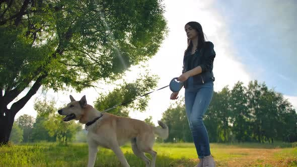 Thumbnail for Attractive Caucasian Woman in Jeans Leads Her Dog for a Walk in Park.