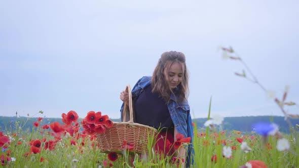 Thumbnail for Portrait of Pretty Young Girl Walking in Poppy Field Gathering Flowers in the Wicker Basket