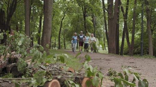 Group of Seniors Running in Park