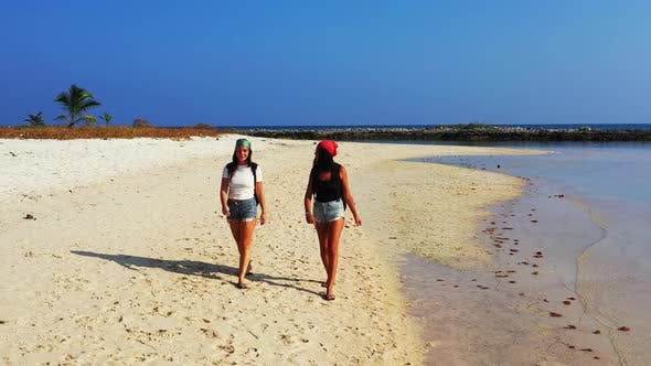 Thumbnail for Sexy Happy Ladies Traveling Enjoying Life on The Beach on Summer White Sand and Blue