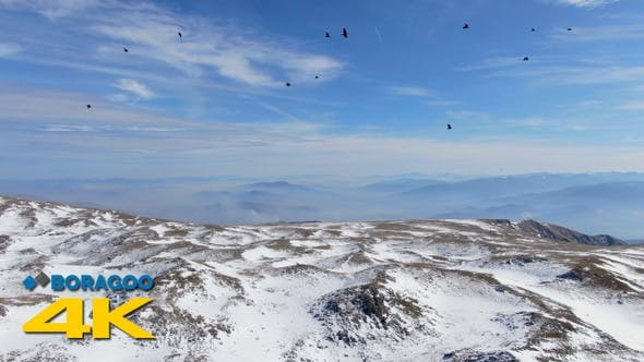 Aerial Mountain Winter