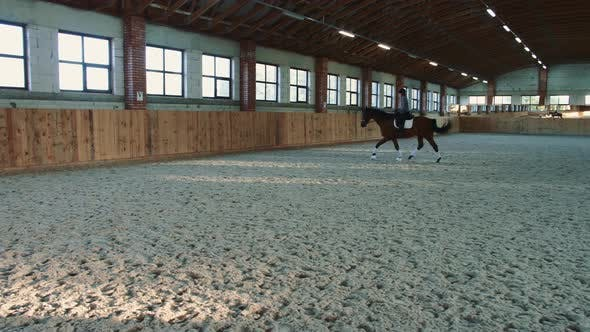 Thumbnail for Woman Riding Horse Fast on Arena