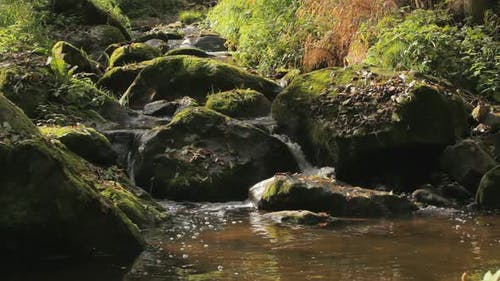 Falls on the small mountain creek