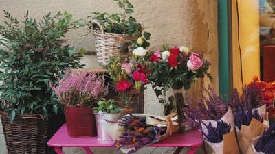 Decorated Plants on the Street in Front of a Shop Window in a Flower Shop