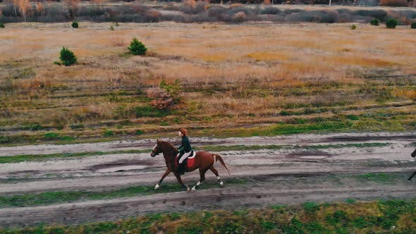 Thumbnail for Two Horses with Equestrians on Their Back Are Galloping on the Road with Puddles