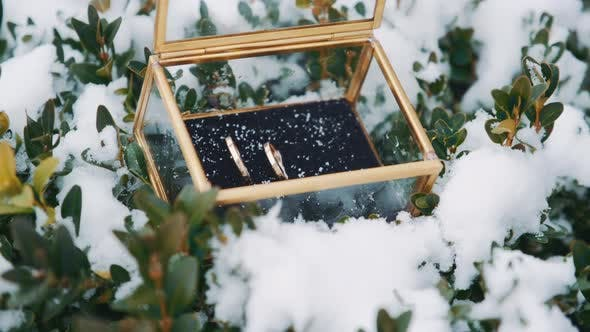 Thumbnail for Wedding Rings in a Glass Box in the Snow