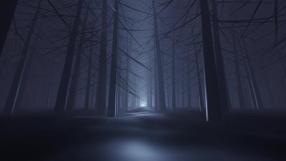 Der dunkle Wald 4K
