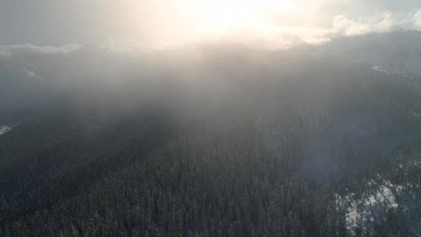 Thumbnail for Winter Mountain Flight In Hazy Fog Clouds Over Snowy Trees