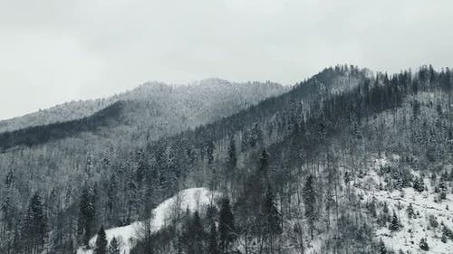 Beautiful Landscape of Winter Mountains and Snowcovered Trees