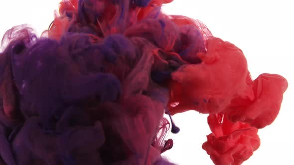 Thumbnail for Ink cloud motion. Color explosion