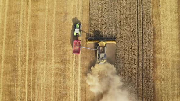 Thumbnail for Harvester Harvests Wheat Crop On Field