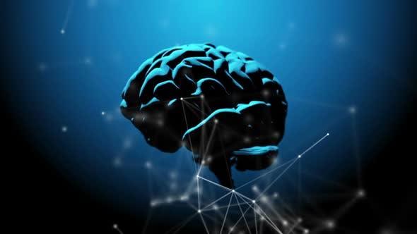 Human brain revolving, illuminated from above