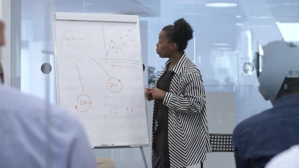 Cover Image for African Female Manager Presenting Marketing Plan