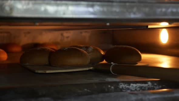 Thumbnail for Close Up of Freshly Baked Bread Taken Out of the Oven