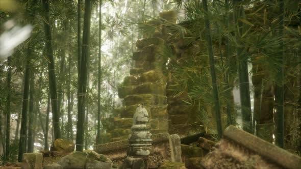 The Ruins of Ancient Buildings in Green Bamboo Forest