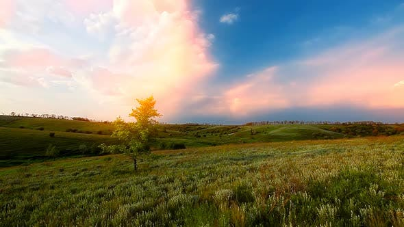 Cover Image for green field spring and cloudy sky