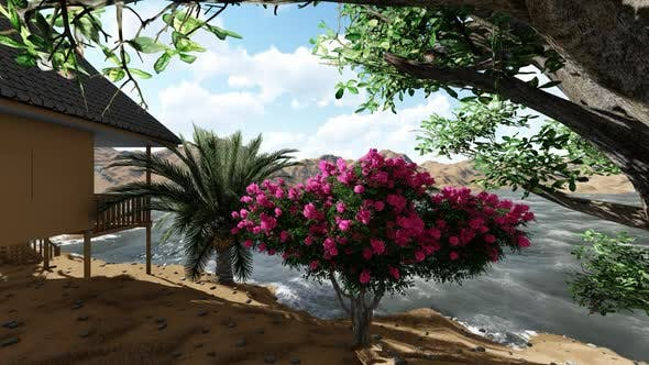 Cover Image for Flowers in a seaside garden