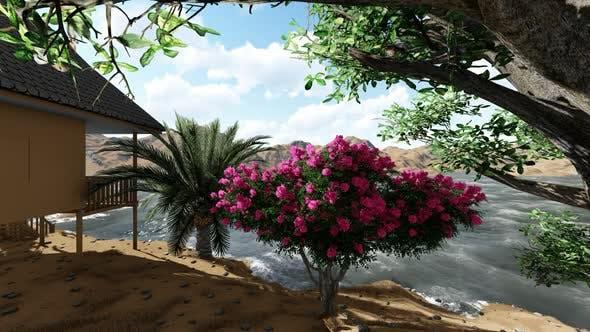 Thumbnail for Flowers in a seaside garden