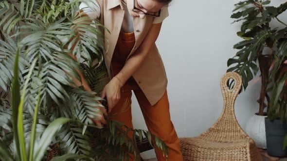 Frau Beschneiden Zimmerpflanze im Indoor Tropical Garden