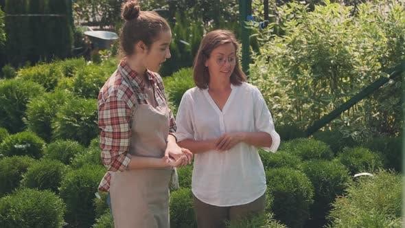 Woman Visiting Sunny Garden
