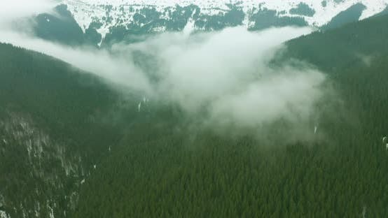 Thumbnail for Aerial View of Wooded Mountains, Wonderful Flight To the Beautiful Forest in the Mountains, Aerial