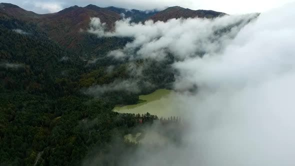 Cover Image for Aerial View Lake Fog Woods