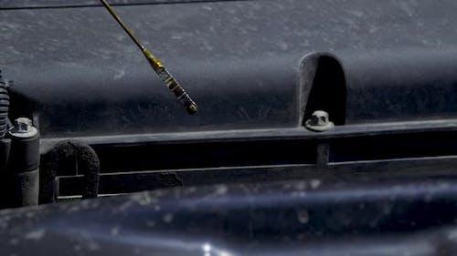 Man Checks the Car Oil Level with a Dipstick